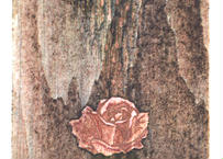 小泉 琢瑞『Rose#1』