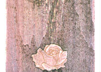 小泉 琢瑞『Rose#2』