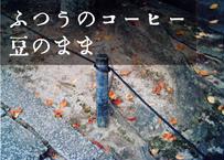 【100g単位・ふつう・豆のまま】10-11月Aタイプ「無常に散るは実りしもの」