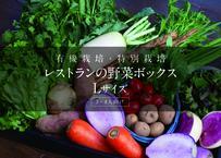 有機・特別栽培  レストランの野菜ボックス[L] 【消費税・基本送料込み】