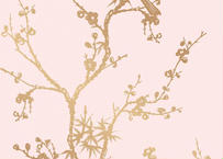壁紙シール2.5M|【バードウオッチング・ピンク】ワイドサイズ