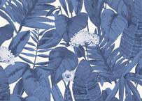 壁紙シール2.5M 【トロピカル・ブルー】