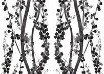 壁紙シール2.5M 【ブランチ・ブラック&ホワイト】
