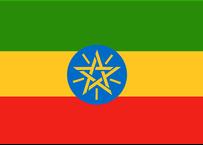 エチオピア シフェラウ ナチュラル  200g