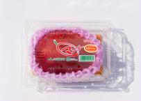 完熟マンゴー 3Lサイズ 1玉 約500g※7月15日までの販売