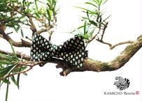蝶ネクタイ KIMONO fabric 型友禅 上京蝶帯 #317