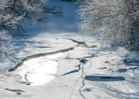 【№28】凍る川に輝く朝の光と動物の足跡