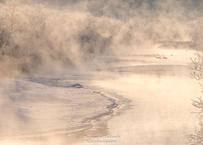 【№53】タンチョウと霧氷と気嵐②