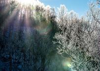 【№33】霧氷を照らす冷たい光