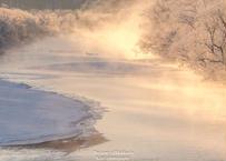 【№52】タンチョウと霧氷と気嵐①