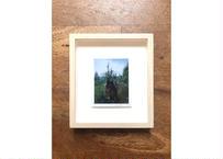 クロダミサト/インスタント写真#81     Misato Kuroda/Instant Photo #81