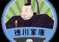 缶バッジ【徳川家康ゆかりの城めぐり】