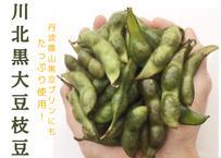 川北黒大豆 枝豆【10/10~発送】