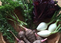 野菜セットと絹さやピクルス ・粉3種類