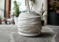 再入荷‼︎    植木鉢 マイアラージ 鉢皿付き