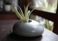 植木鉢  ペブコ11
