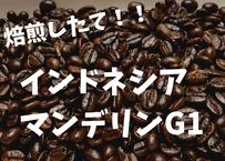 インドネシアマンデリンG1 200gコーヒー豆焙煎したて!!