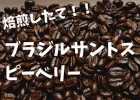 ブラジルサントスピーベリー 200g 自家焙煎コーヒー豆!!