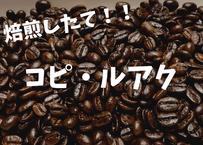 高級豆コピ・ルアク!! 100gコーヒー豆焙煎したて!!