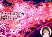 桃咲夜(はなさくや)すずによるチャット恋鑑定20分