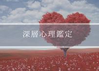 【単独購入不可】【霊感霊視メニュー専用オプション】深層心理鑑定