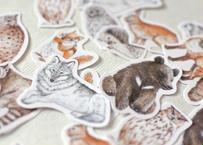 森の動物のフレークシール