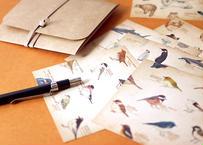図鑑風メモ便箋セット*B〔野鳥・森の動物・海の生き物〕