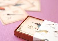 野鳥の小さな図鑑風メッセージカードBOX