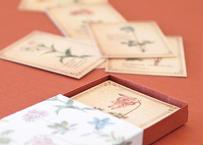 高山植物の小さな図鑑風メッセージカードBOX