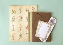 野の花の図鑑風レターセット
