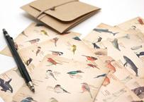 図鑑風メモ便箋セット*B〔森の動物・野鳥・海の生き物〕