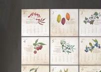 木の実の図鑑風カレンダー2020