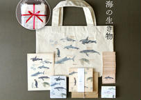 ギフトセット〜Ocean Animals〜