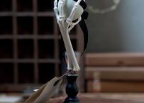 Bird skeletal specimen -鶏足の骨格標本- 左脚ブラック
