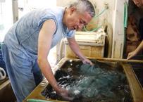 #8 藍染めは、水の中で染める!?藍染めの水中酸化について
