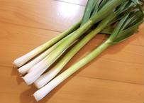 【春の恵みの味わい!!】自然栽培べっぴんやさいの『葉にんにく』約500g