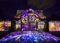 *追加販売*【 NAKED, INC. VR 】FLOWERS BY NAKED 2020 −桜− 世界遺産・二条城