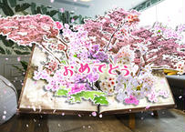 FLOWERS BY NAKED GIFT 03 シバザクラ(おめでとう)