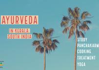 インドのアーユルヴェーダ病院:入学・入院サポートサービス