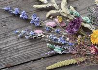 dry flower単品セット
