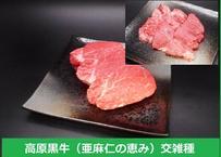 高原黒牛ヒレステーキ・焼肉セット560g(ステーキ120g×3枚、焼肉200g)