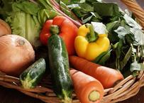 【お試し】九州産直おまかせ野菜セット(6~7品目)