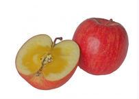 青森りんご・フジ  5kg