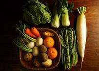 【定期便】くまもと有機の野菜8~10点セット