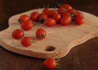 アイコミニトマト