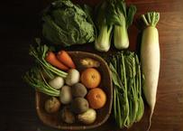 【お試し】くまもと有機の会野菜セット