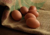 産直卵こがね/6個