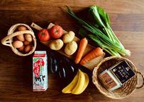 【定期便】自然派基本食材セット