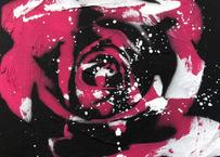 Paint Rose「上品」- Pink