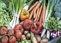 熊本県天草市の「自然栽培」お任せ旬の野菜セット Mサイズ(クール便)